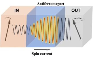 Coherent Transfer of Spin Angular Momentum by Evanescent Spin Waves within Antiferromagnetic NiO
