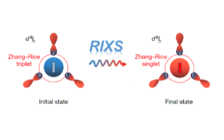 RIXS experiments at Diamond have led to the discovery of an exciton in a quantum entangled state