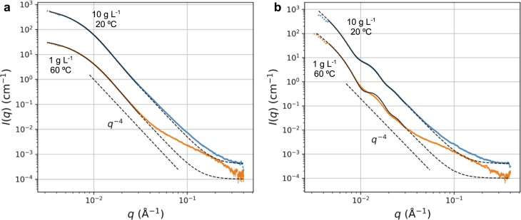 Comparative SAXS data (blue and orange dots) with fits indicated by solid lines in the fitting range and with dashed line outside of it: (a) LNPs fitted with a model for solid spheres, (b) LNCs fitted with a model for spherical shells. For both graphs, top curve represent a dispersion concentration of 10 g L−1 measured at 20 °C, whereas the lower curve stands for a concentrate of 1 g L−1 measured at 60 °C.
