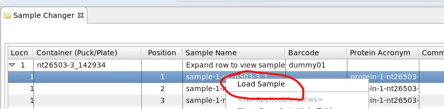 load sample from sample changer right click